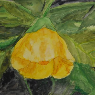 Flor del jardín botánico | 15x21