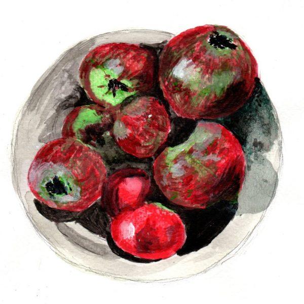 Manzanas. 14x19cm. 90e.