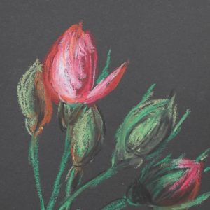 27. Rosas. 21x15 cm. 95e.