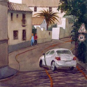 Paseo del Generalife. Alberto González Serrano. 36x26 cm. 350 euros