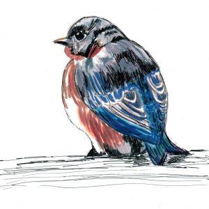 Pájaro de poesía. 20,5x16,5cm. 60 e.